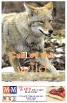 Sideroads Spring 2010, page SR08