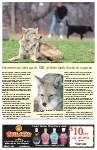 Sideroads Spring 2010, page SR10