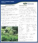 page047.pdf