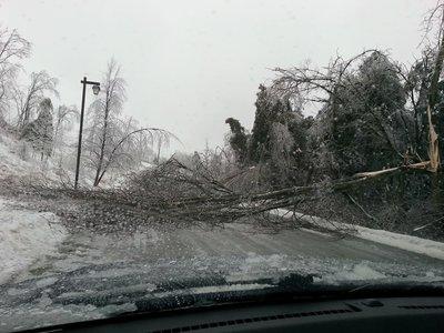 Cinderbarke Trail, Georgetown, Ice Storm 2013