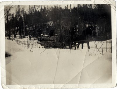 Load of Logs, Crazy Wheel Camp, Circa 1900