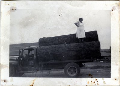 Mrs. Paul David on a Load of Logs, Circa 1940