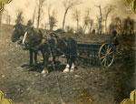 Bert Gardiner Planting, Circa 1905