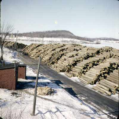 Logs piled along Hunter's Bay, property of Muskoka Wood Products, Huntsville, Ontario. c1950.                                                     Ltd., Huntsville,Ont.
