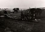 Plowing Match