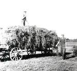 Albert Pratt on Haywagon