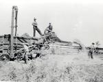 Threshing at Farm of Bowman Allen