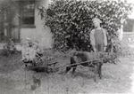 Roy Goodfellow, children in wagon