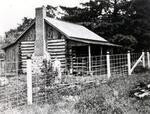 The McMurrich Cabin