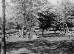 Innisfil Township Park