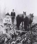 Agriculture - Plowing