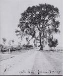 Roads-9th Line