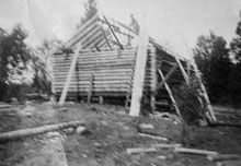 Log Cabin being built on the Brook's Farm