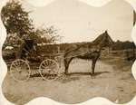 Man in horse-drawn carriage