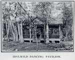 Idylwild Park dancing pavilion