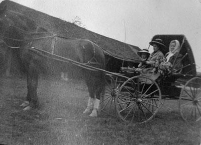 Three women in buggy