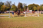 Equestrian Event, Milton Fairgrounds
