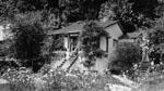 """Sunny Brae"" cottage"