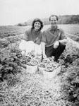 Laura and John Hughes.   Springridge Farm.