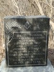 Grave of David Downie at the Milton Bronte Street Pioneer Cemetery.