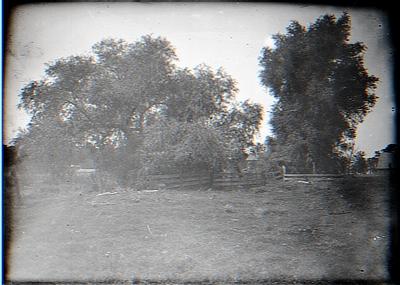 Near Sherman's Hill from meadow