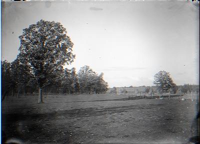 Corner of 24 acre lot