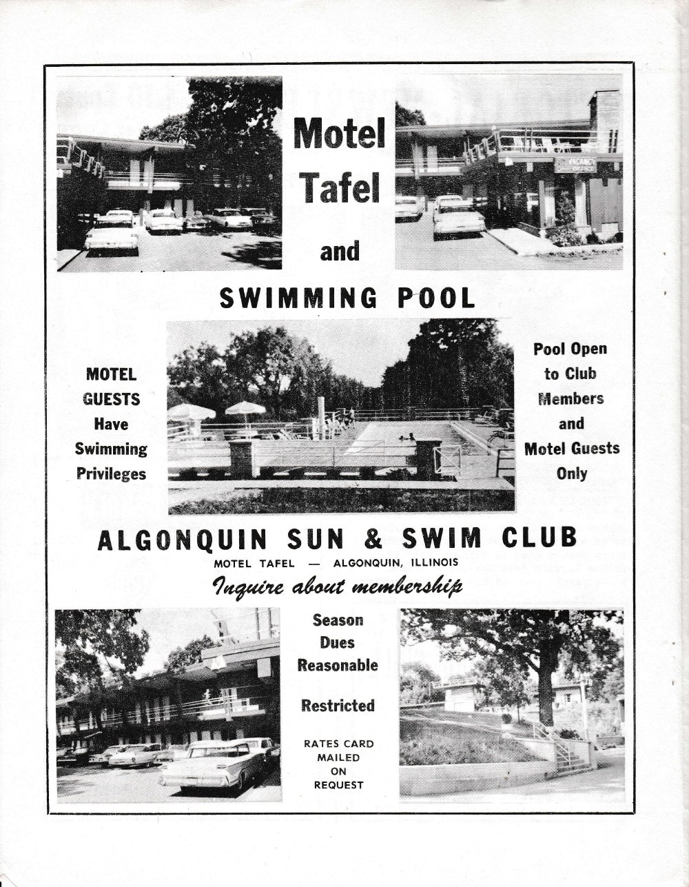 The Pictorial Newsletter: August 2, 1961