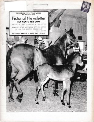 The Pictorial Newsletter: August 16, 1961