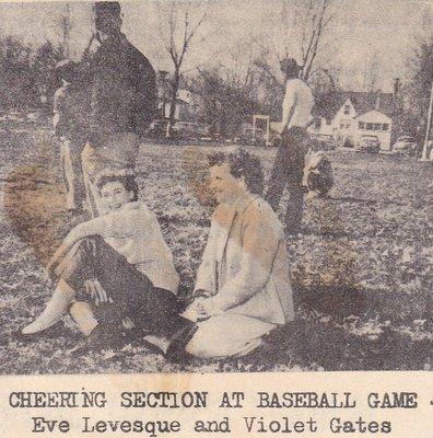 Cheering Section at Baseball Game