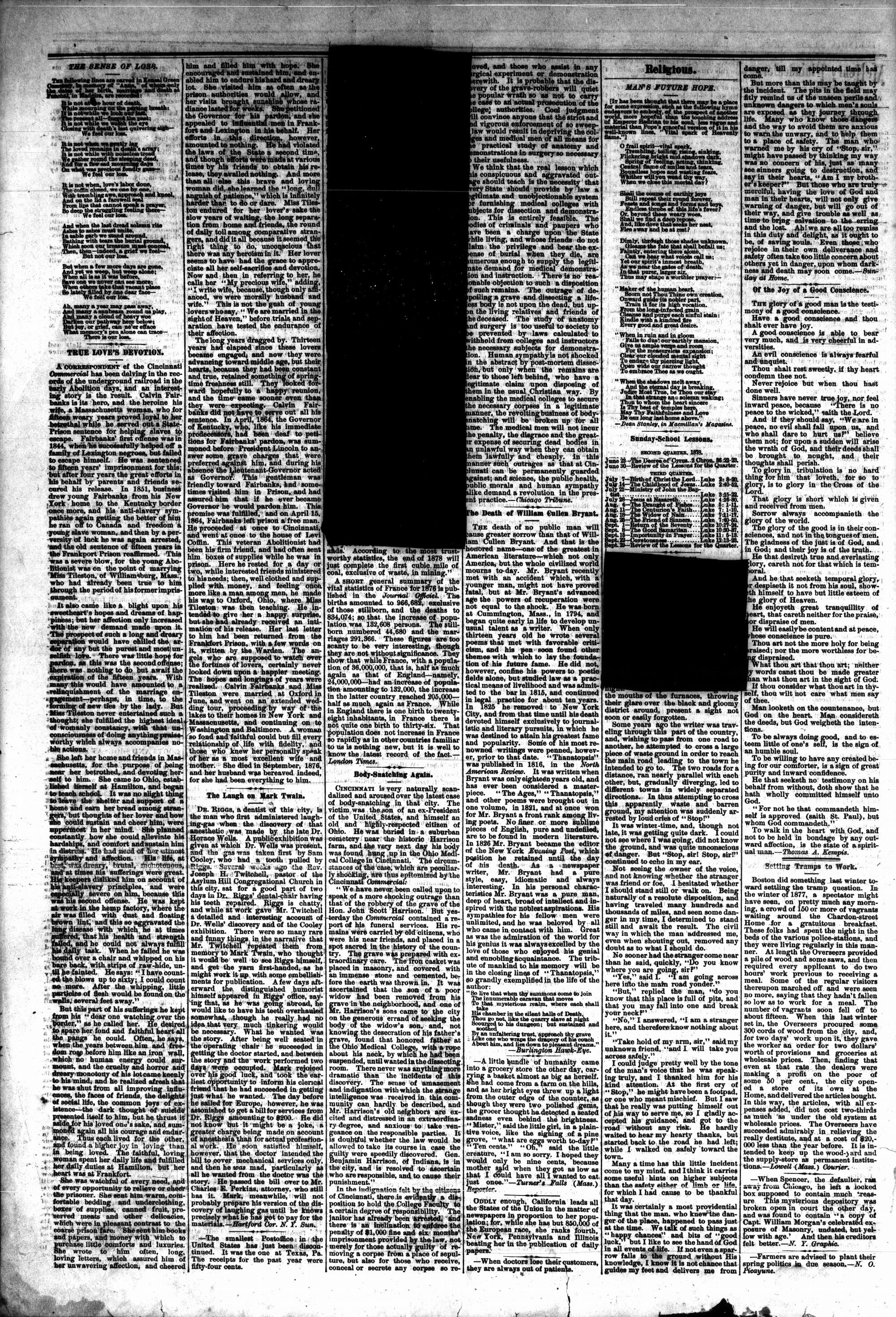 McHenry Plaindealer (McHenry, IL), 19 Jun 1878