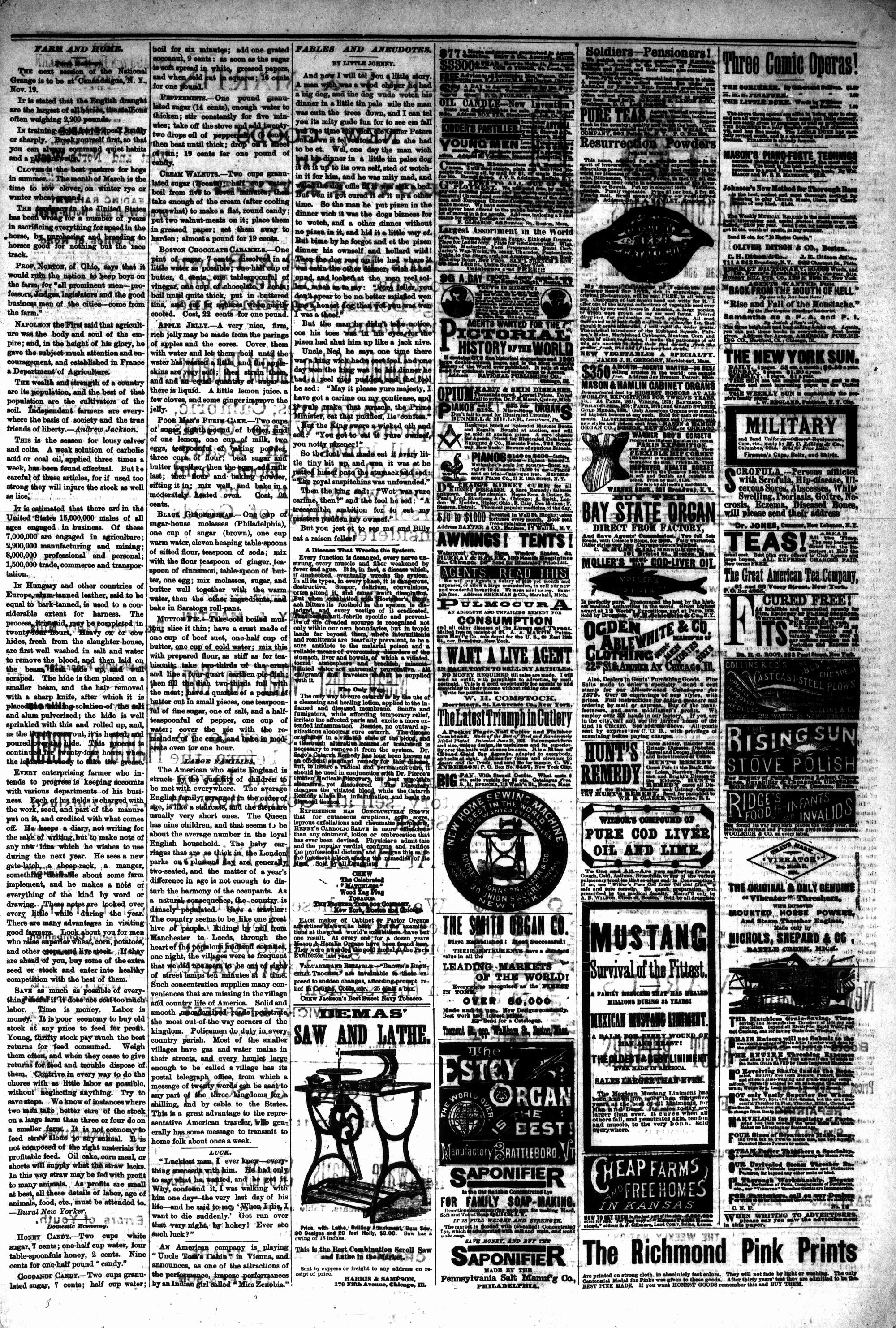 McHenry Plaindealer (McHenry, IL), 19 Mar 1879