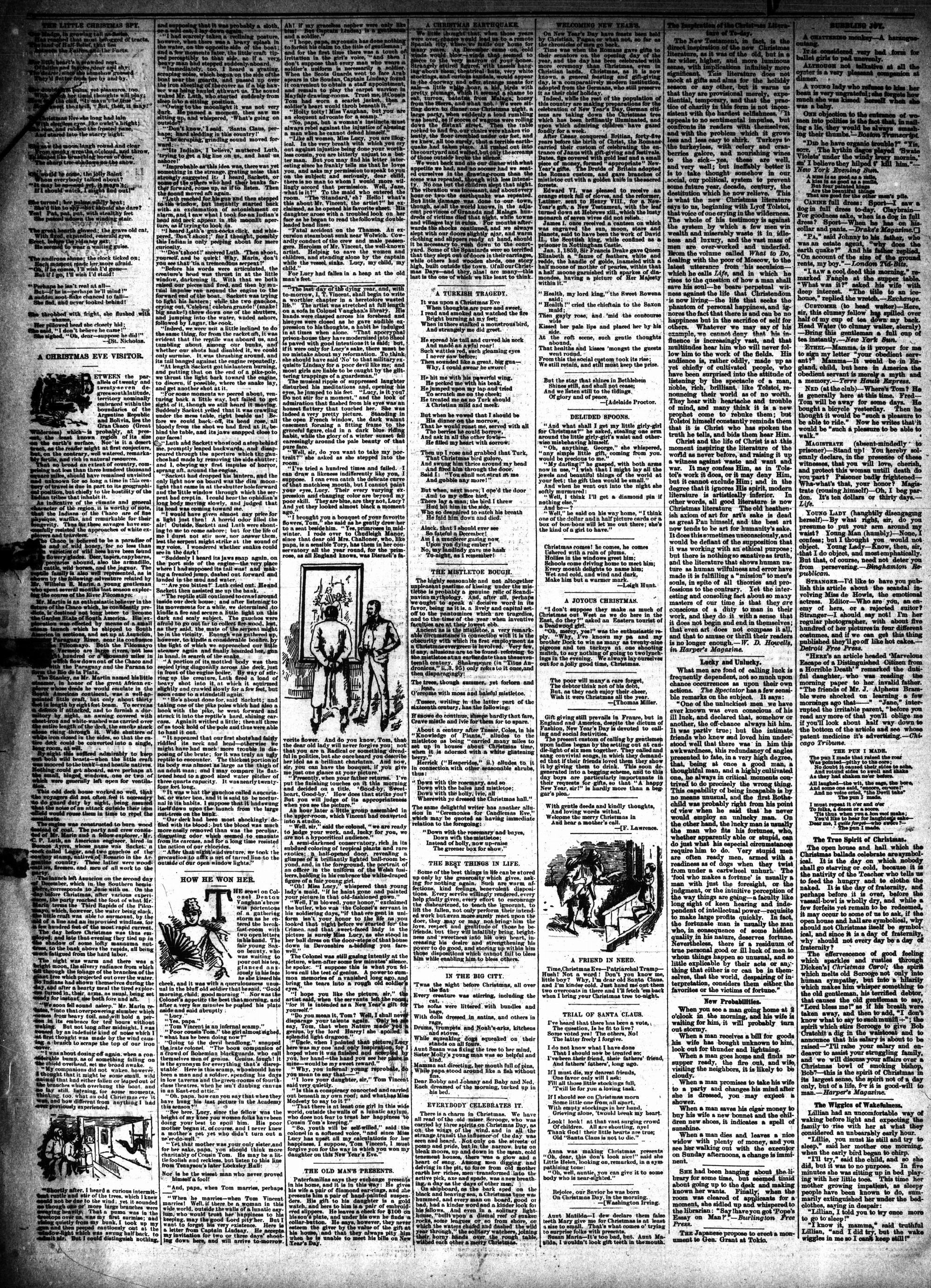McHenry Plaindealer (McHenry, IL), 19 Dec 1888