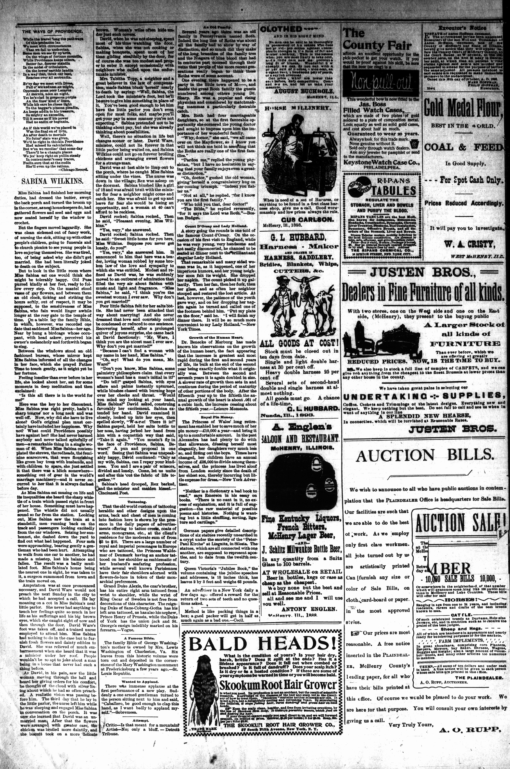 McHenry Plaindealer (McHenry, IL), 8 Nov 1893