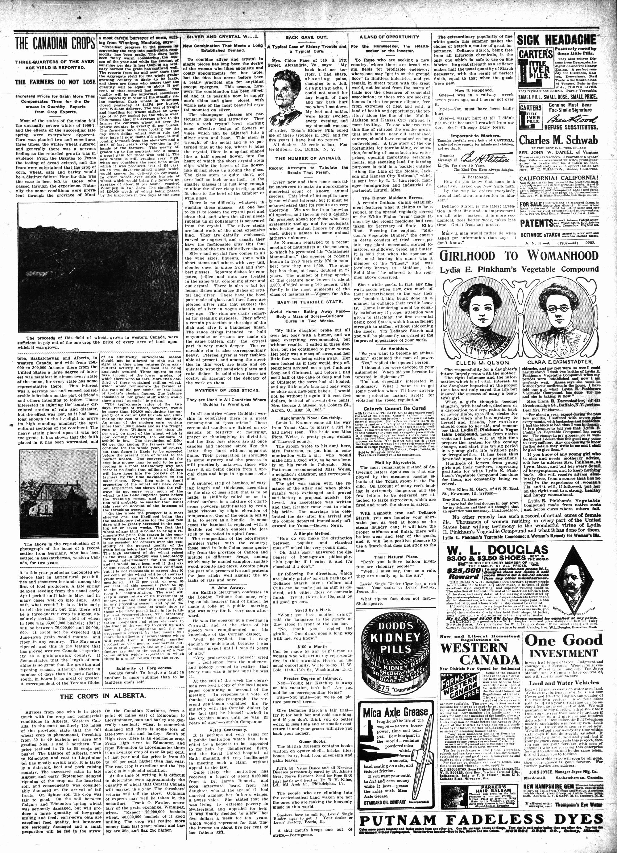 McHenry Plaindealer (McHenry, IL), 31 Oct 1907