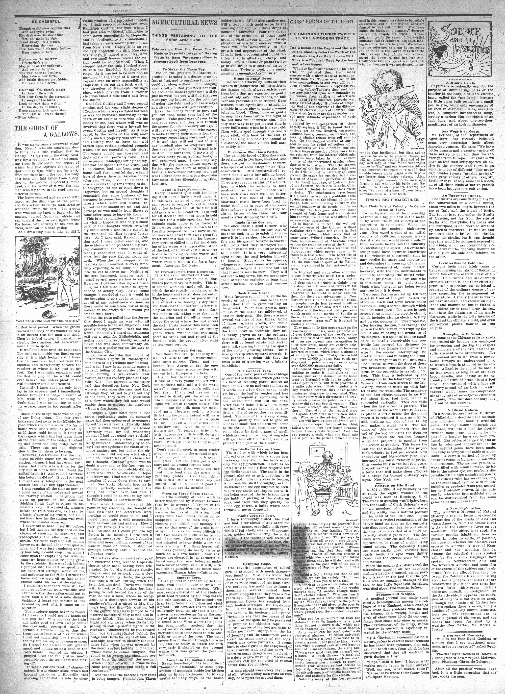 McHenry Plaindealer (McHenry, IL), 19 May 1897