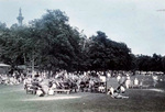 Marching Band at a Picnic in Queenston Height's Park