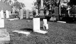 St. David's Cemetery - Headstone Vandalism