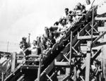 Crystal Beach Amusement Park - Roller Coaster
