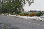 Aftermath of Fort Erie Snowstorm, October 12, 2006 - Branches down along Niagara Parkway - Buffalo in background