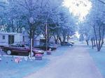 Lundy's Lane, 8845, Scott's Trailer Park