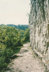 Niagara Glen Nature Trails - Scaled Cliffs of Wintergreen Terrace