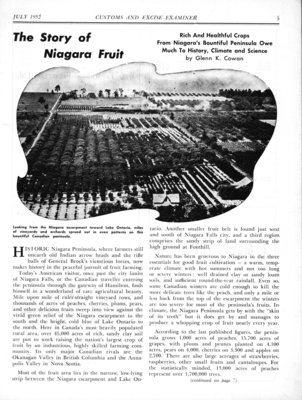 The Story of Niagara Fruit