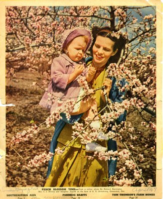 Peach Blossom Time- Mrs. I. J. Shirley and daughter Jeanne on the farm of A.R. Armstrong, Queenston, Ont.