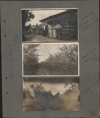 Riverview Farms - family album