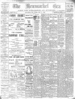 Newmarket Era (Newmarket, ON), November 22, 1895