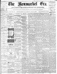 Newmarket Era (Newmarket, ON)13 Aug 1875