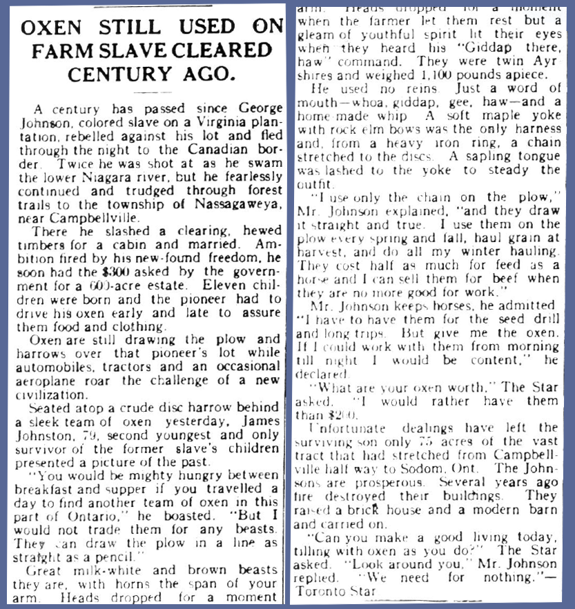 A newspaper article in the August 20th, 1931 issue of the Canadian Champion, published in Milton. Courtesy the Milton Public Library.
