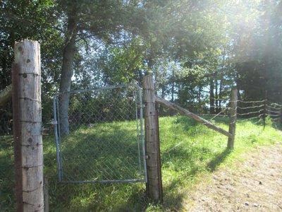 Burleigh/Burley Graveyard