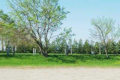 Maple View North Mennonite Cemetery