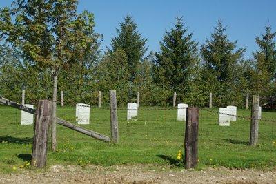 Creek Bank Mennonite Cemetery